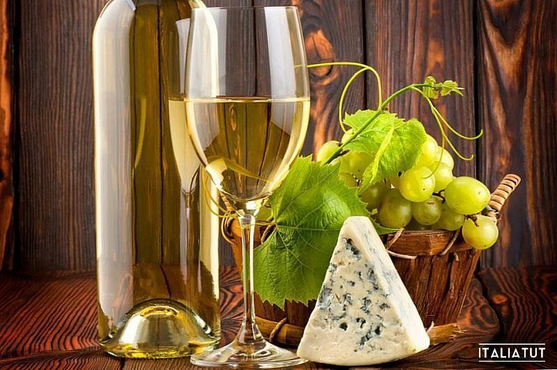 путеводитель по винам