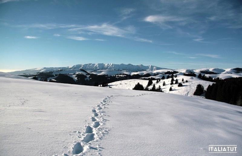 горнолыжные курорты италии для начинающих